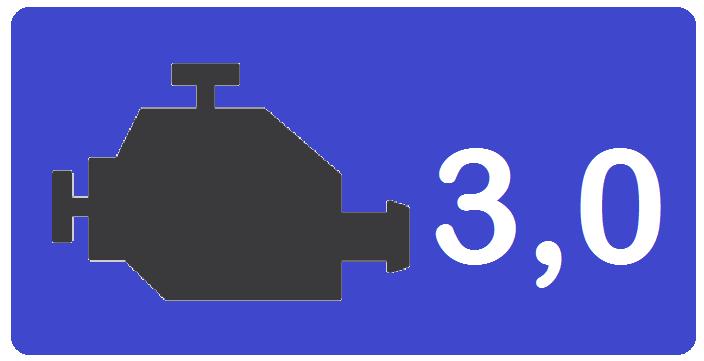 Motor 3,0 F1C