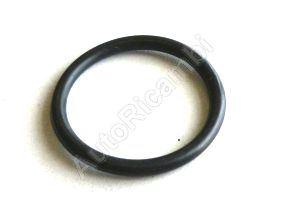 Těsnící kroužek zátky oleje Iveco Daily