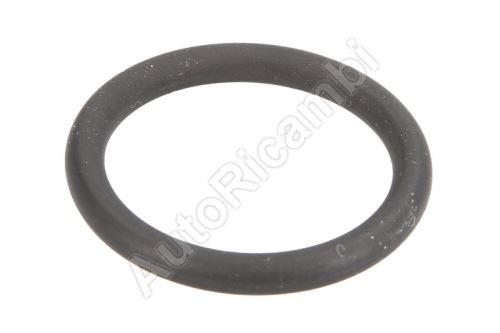O-kroužek vstřikovače Iveco EuroCargo Tector